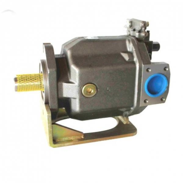 PAKER YB1-25/25 Piston Pump #1 image